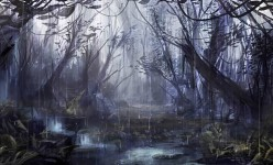 The_Dark_Forest_by_Blinck