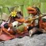 3D Art John Strieder Hippie Ants