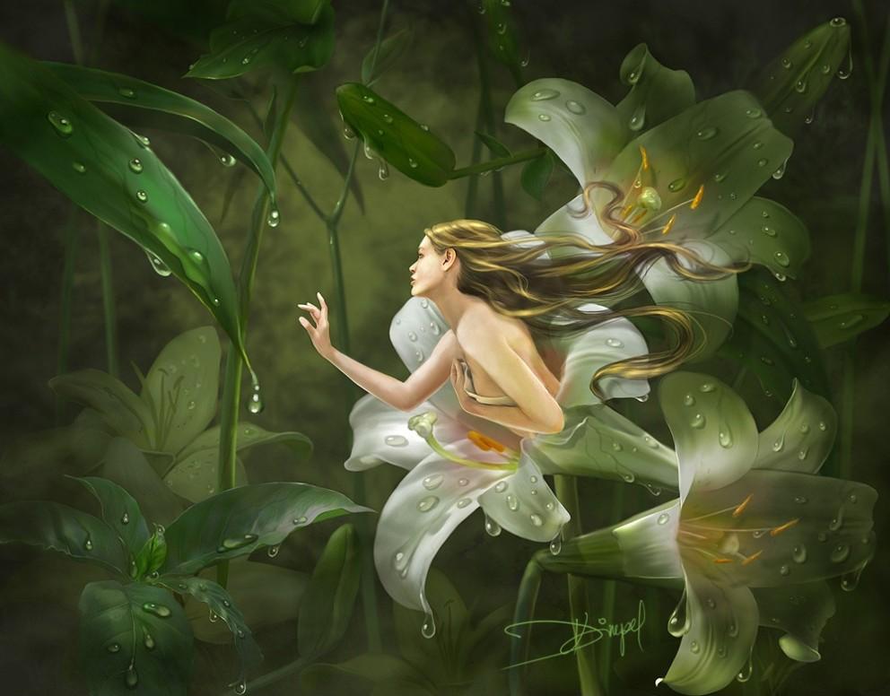 Fantasy Art Mirrors Of Twilight